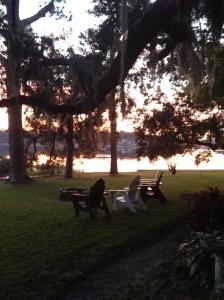 Orlando Backyard