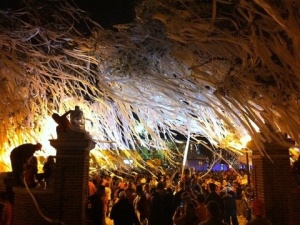 Toomers4